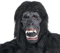 monkey suit lawyer