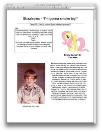 skizz cover page